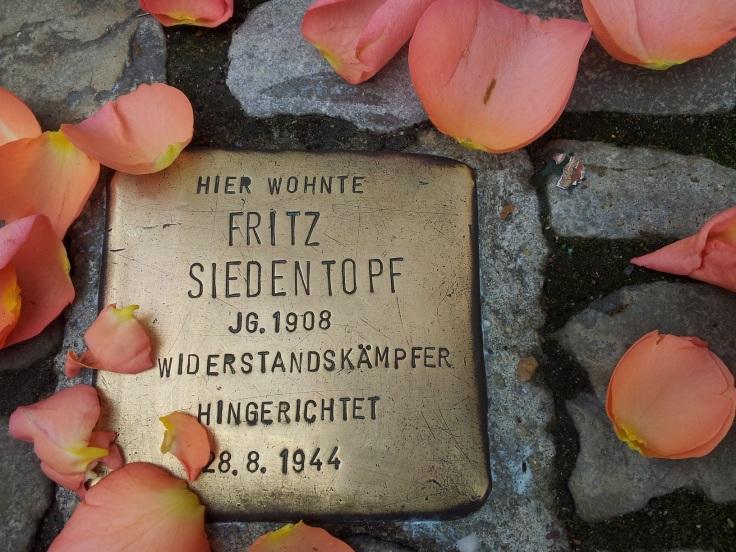"""Ein """"Stolperstein"""" mit einigen Blütenblättern"""